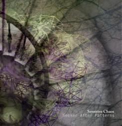 Sensitive Chaos - Seeker After Patterns [Subsequent Records SR003-02] 2011
