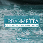 Anaamaly - Urban Metta, Vol. 1 [Planet27music 190394288860] 2016