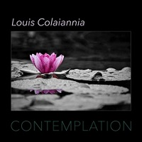 Louis Colaiannia - Contemplation [ ] 2020