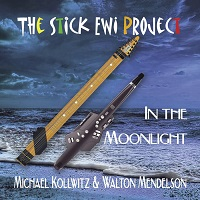Michael Kollwitz - In the Moonlight - The Stick EWI Project [ ] 2020