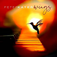 Peter Kater - Wings [Points of Light Records POLR 2019] 2019